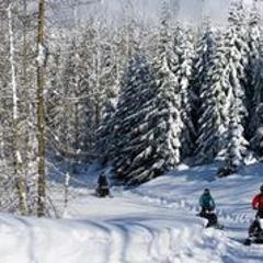 Snowmobile Tour - Wilderness Run