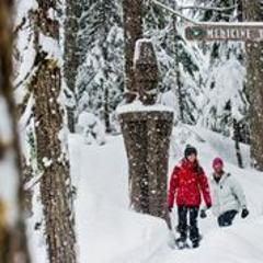 Snowshoe - The Medicine Trail