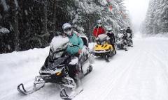 Snowmobile Tour - Callaghan Cruiser