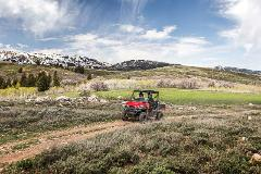 Hanmer Springs Off Road Buggy