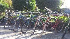 Vintage Half Day Bike Hire