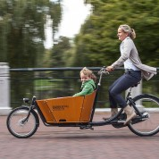 Babboe City e-Bike