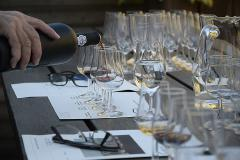Athens Wine Tasting. Discover 6 premium local wines of Greece
