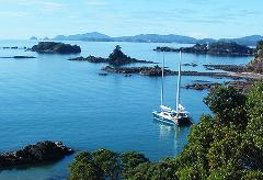 VIP Full Day Sailing in Bay of Islands Private Charter: 54ft Catamaran - Day 4