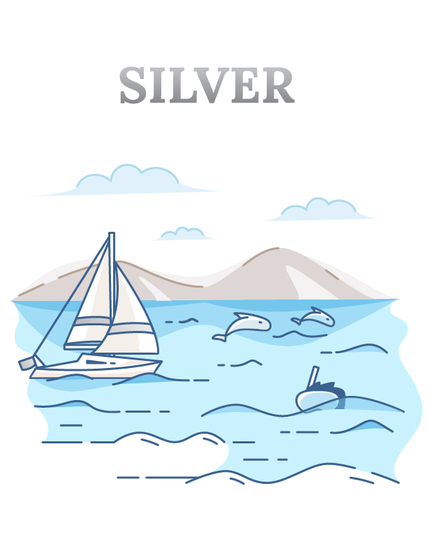 Silver Tour (3-hour dolphin & whale excursion)