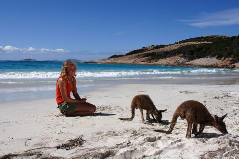 Nullarbor Traveller: 9 Day - Perth to Adelaide Wildlife Adventure
