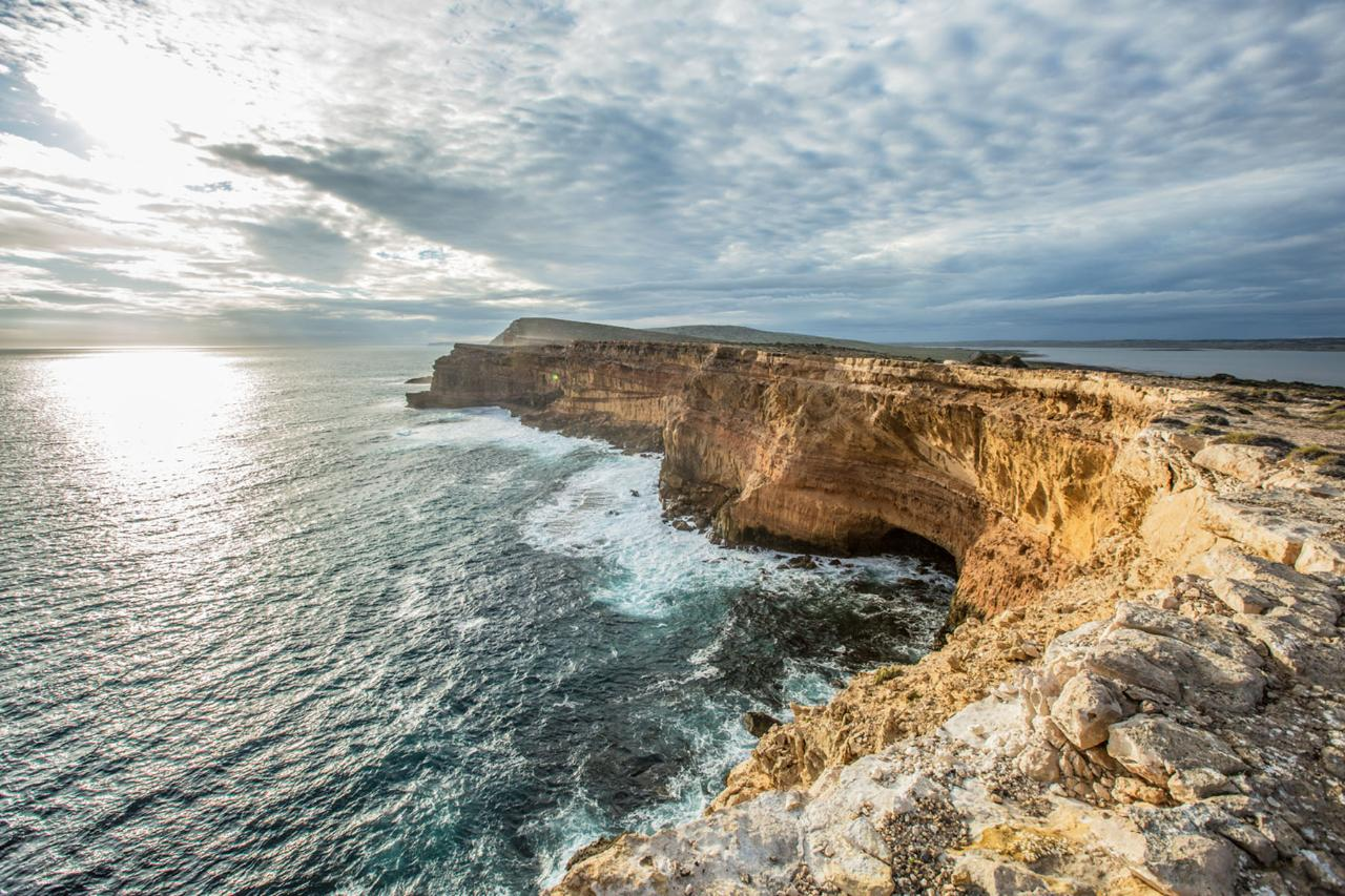 Xplore Eyre – 1-Day Port Lincoln Tour for Cruise Ship Passengers