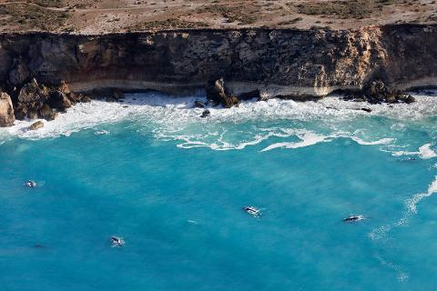 Xplore Eyre: Head of Bight Ocean & Outback - 3 Day Tour