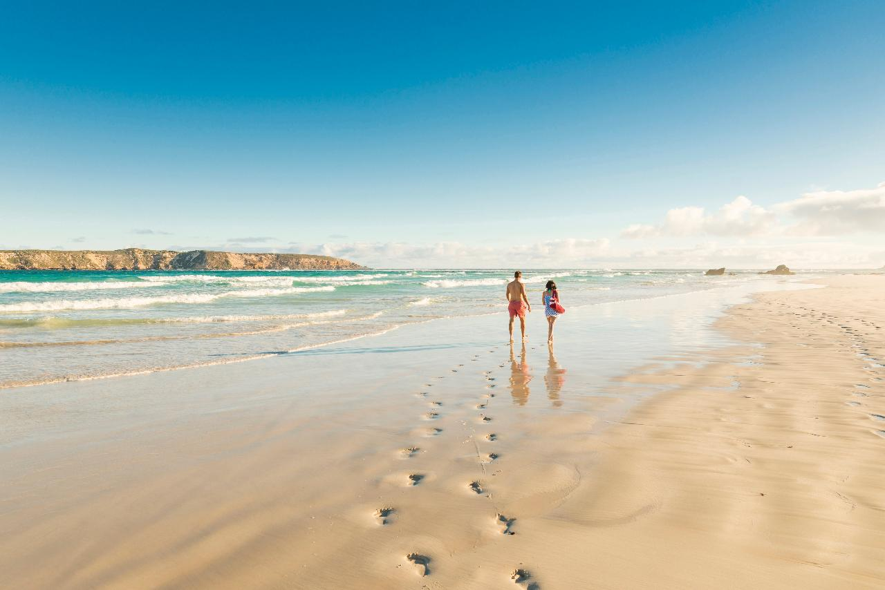 Xplore Eyre: The Best of Port Lincoln & Coffin Bay - 3 Day Tour