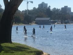 Swan River (Perth CBD) Board Hire - GROUP BOOKING (4 board minimum)