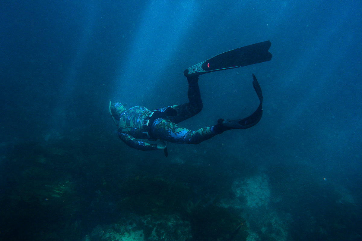 3hr Freediving Adventure Tour