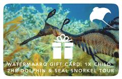 Gift Card 2hr Dolphin & Seal Swim Reef Snorkel Tour Child