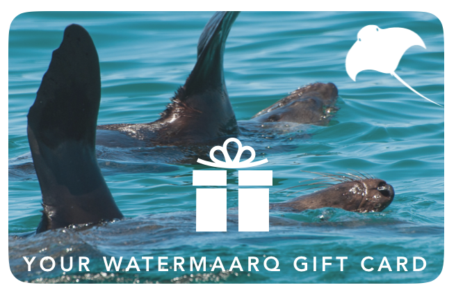 WaterMaarq Gift Card $200