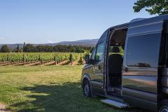 Gift Voucher - Private Wine Tour - 10 people
