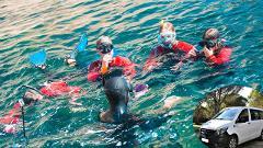 Descobrir o Parque Marinho em Snorkeling com transfer