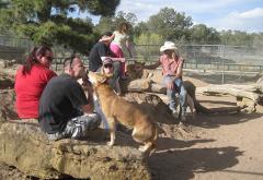 Canine Encounter Tour