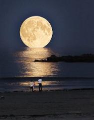 Islamorada Full Moon Party Cruise