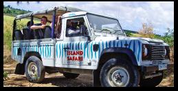 Tailor-Made Safari