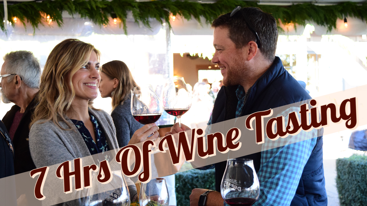 Private 7 Hour Wine Tasting Tour for 1-8 guests (visit 3-4 Wineries)