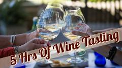 Private 5 Hour Wine Tasting Tour for 5-8 guests (visit 2-3 Wineries)