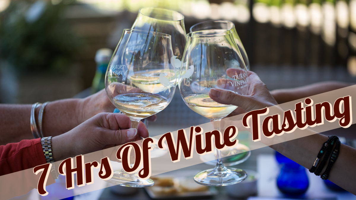 Private 7 Hour Wine Tasting Tour for 5-8 guests (visit 3-4 Wineries)