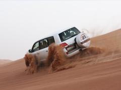 Morning Safari (Dune Drive)