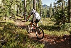 Rockies Mountain Biking Tour