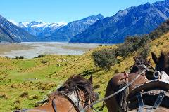 Lord of the Rings High Country Station Pioneering Clydesdale Experience & Scenic Day Tour from Christchurch