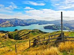 Akaroa Well-Being Eco-Safari Day Tour from Christchurch