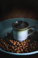 Coffee Farm and Llano Grande Waterfalls