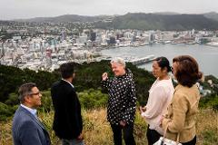Full day tour of Wellington