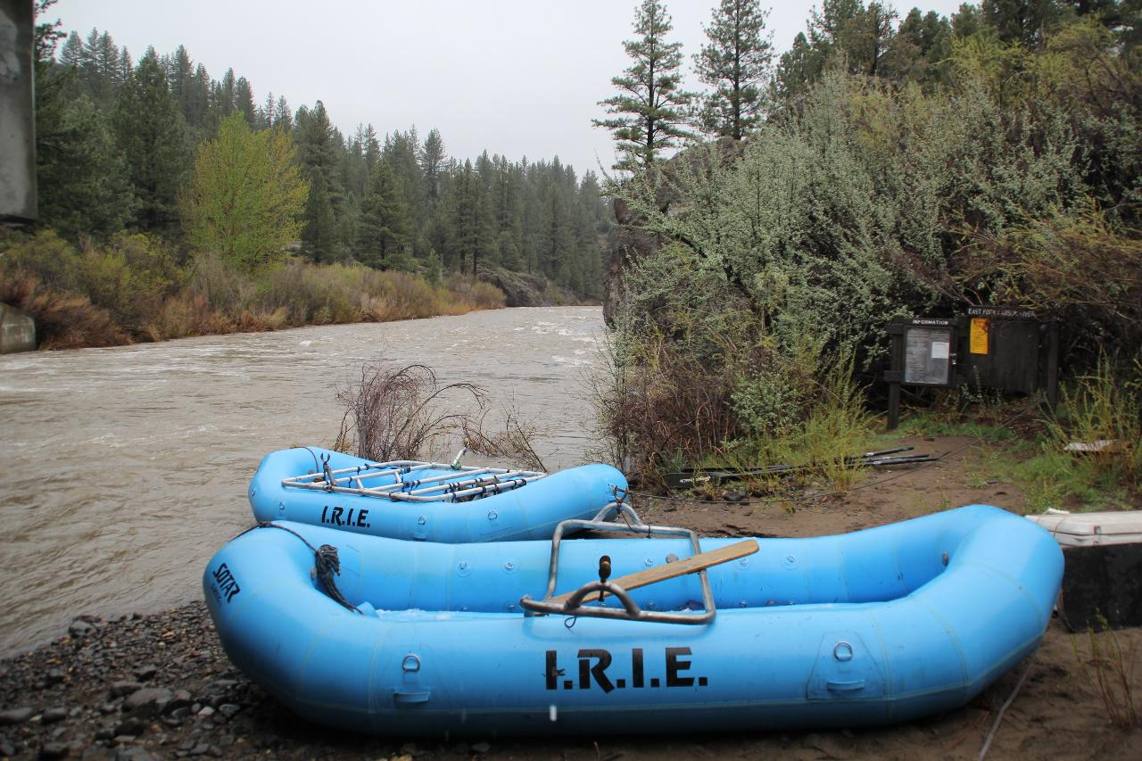Carson River Full Day Rafting Trip (Class II)