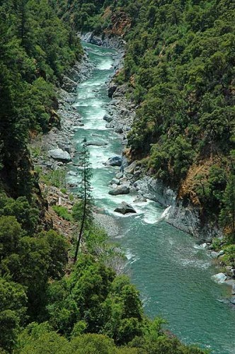North Fork American River Full Day Rafting Trip (Class IV)