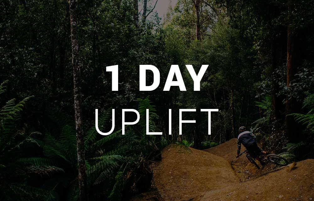 1 Day Uplift