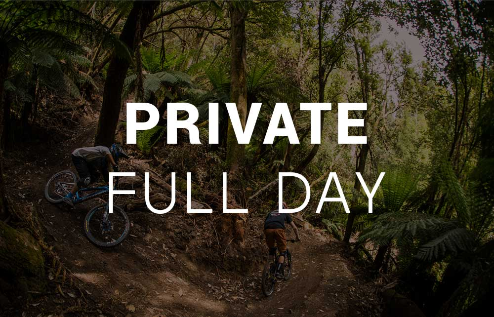 Private Lesson - Full Day