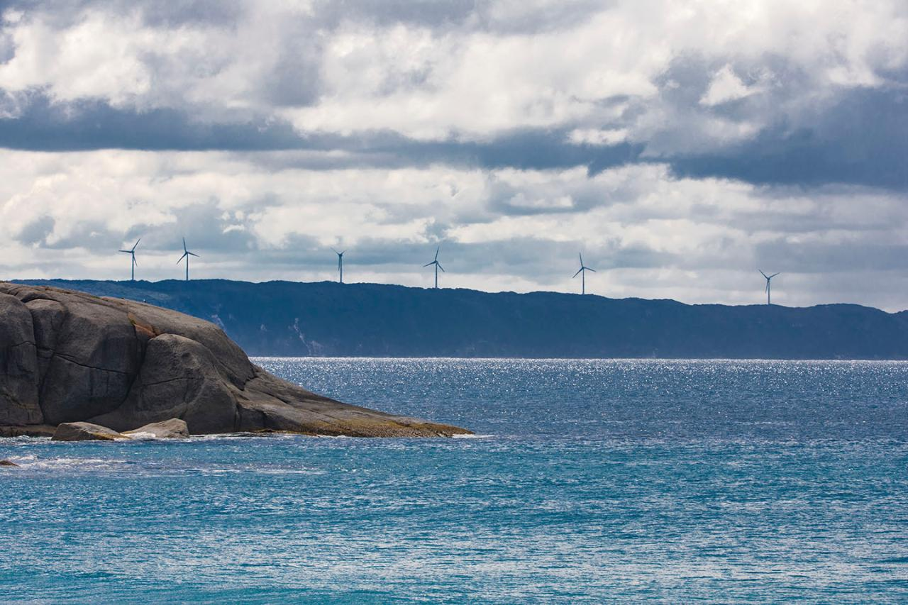 Albany 4x4 Adventure Windfarm and Muttonbird Beach